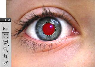 Rote Augen aus Fotos entfernen - Bild 1